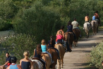 Activities and summer sport in Val di Fassa - Horse riding schools ...
