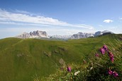 Val Jumela - Panoramic view of the Dolomites