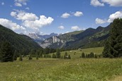 Panoramic view in summer - Val San Nicol�