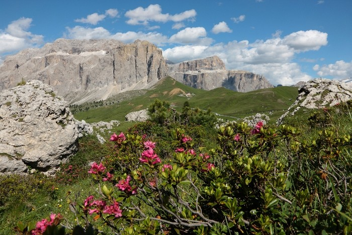 #DolomitesVives: shows, emotions and sustainability on stage at the Sella Pass